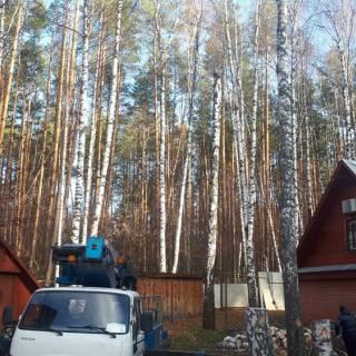 Спил дерева, автовышка 28м, Бугры, 2018г
