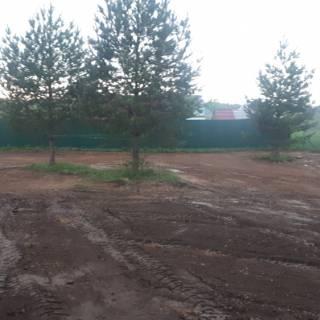 Планировка участка, Зименки, 2019г