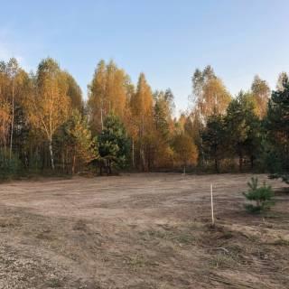 Расчистка участка, Гремячая поляна, 15 соток, 2020г