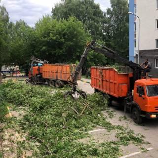 Спил деревьев, автовышка, ул.Генерала Ивлиева, 2020г