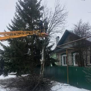 Спил дерева на автовышке, Кантаурово, 2020г