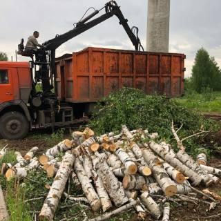 Спил деревьев, Ломовоз, 2020г